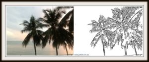 Colouring in Coconut Trees